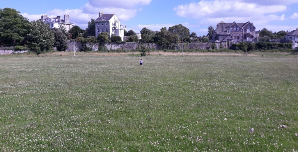 Field with flowers. There is a child running away from the camera and old buildings in the background.